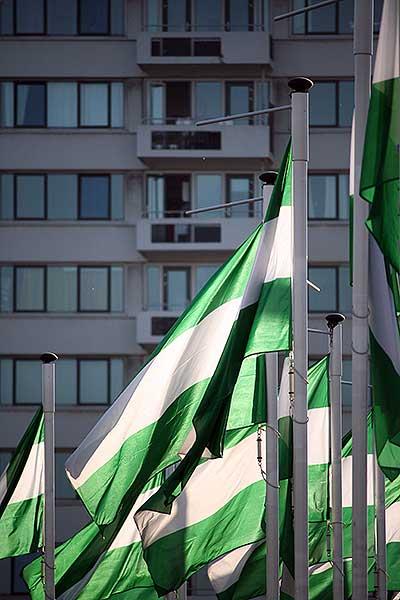 Rotterdamse vlaggen op de Boompjes