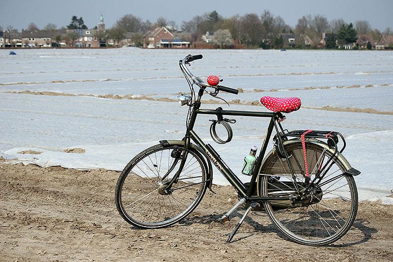 Luie fietser, of toch niet?