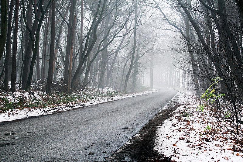 Fotoserie: Prutsneeuw en dikke mist