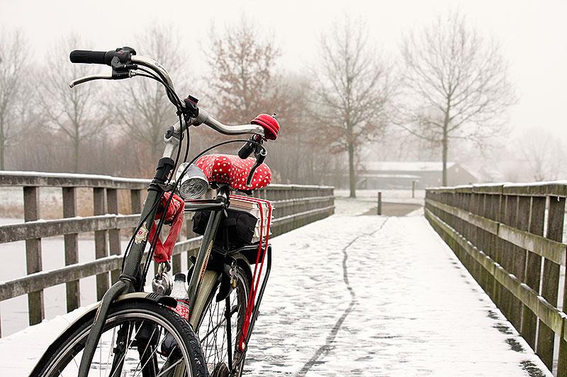 Fotoserie: Oké dan gaan we fietsen