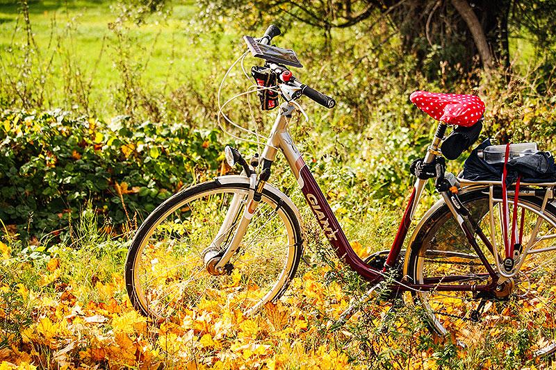 Typisch fietsen in de herfst