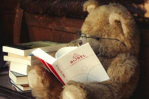 Boekenbeer